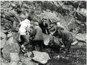grey_mares_tail_rescue_bandw